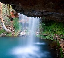 Fern Pool - Karijini NP by Aaron Fisher