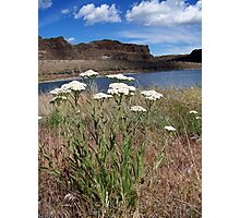 Ancient Lakes Trail #2 Photographic Print
