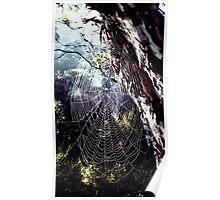 Spiderweb Gum Poster