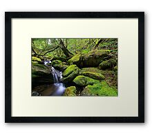 """Mossy Creek"" Framed Print"
