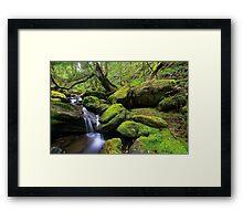"""Mossy Creek"" Framed Print"