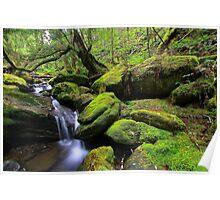 """Mossy Creek"" Poster"