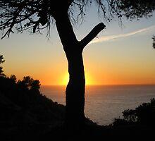Sunset Cerro Gordo by Glen Ladegaard AUSTRALIA