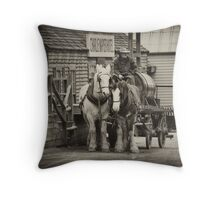 Delivery For Charlie Throw Pillow