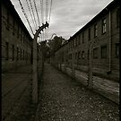Auschwitz I Electrified Fence 2 by Peter Harpley