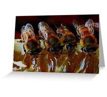 Api, che immettono il miele nelle cellette - missano  ( zocca modena italy)...... 047 Greeting Card