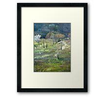 Graveyard Fields Spring Framed Print