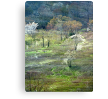 Graveyard Fields Spring Canvas Print