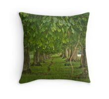 Meandering Way Throw Pillow