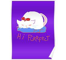 HI PURRFECT Poster
