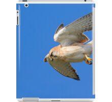 Nankeen Kestrel on the hunt 1 iPad Case/Skin