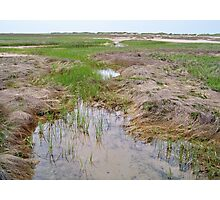Cape Cod National Seashore Photographic Print