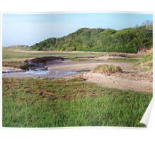 Cape Cod National Seashore Poster