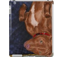 Young Red Nose Pit Bull Laying on his Back, Ready to be Tickled  iPad Case/Skin