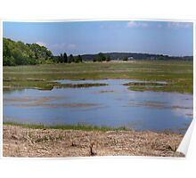 Wellfleet Bay Wildlife Sanctuary Poster