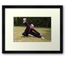 Another Kung Fu Stance Framed Print