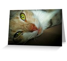 123 - Look into my Eyes! Greeting Card