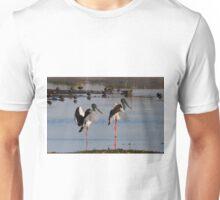 Pond Ballet Unisex T-Shirt