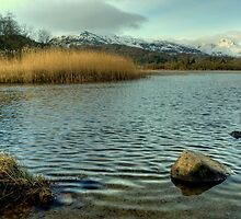 Elterwater in Winter by Jamie  Green