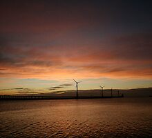 Morning Blyth by Chris Thompson
