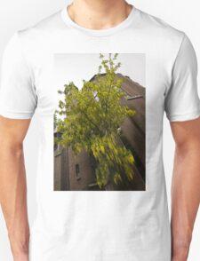 Beautiful Golden Chain Tree in Full Bloom Unisex T-Shirt