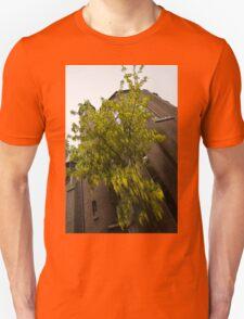 Beautiful Golden Chain Tree in Full Bloom T-Shirt
