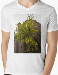 Beautiful Golden Chain Tree in Full Bloom Mens V-Neck T-Shirt