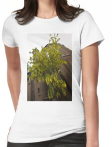 Beautiful Golden Chain Tree in Full Bloom Womens Fitted T-Shirt