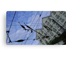 house web Canvas Print