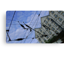 house web Canvas Print