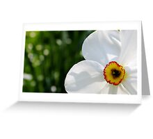 Spring for ever Greeting Card
