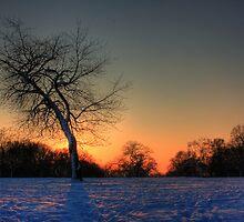 Sunset on Snow by Martin Griffett