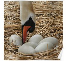 Egg Rolling Poster