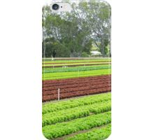 Market Gardens - Bacchus Marsh, Vic. iPhone Case/Skin
