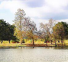Balboa Park Panorama by zzsuzsa