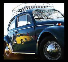 Bug Reflection by Wishart