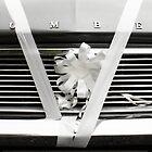 wedding car grill by Wishart