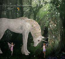 Where Fairies Live by Vanessa Barklay