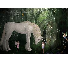 Where Fairies Live Photographic Print