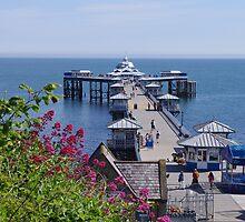 Llandudno Pier by Mark Wilson