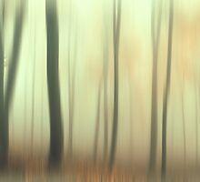 Terra Incognita. Impressionism  by JennyRainbow