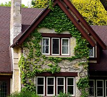 Nice  Home/Mansion with Creeping Vines by James Formo
