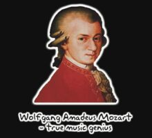 Wolfgang Amadeus Mozart by Peter Pesta