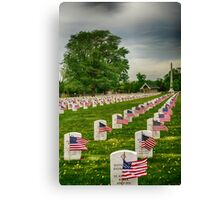 Veterans Salute Canvas Print