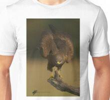 Black Kite Unisex T-Shirt