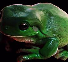 Kermit by jmdgilbert