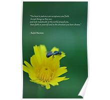 Quote for Life Poster