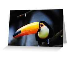 What Did You Say? Toco Toucan Greeting Card
