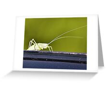 The Green Grasshopper Greeting Card