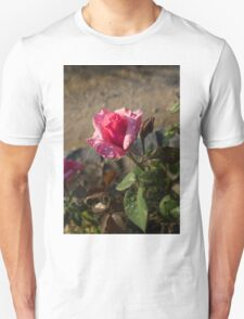 Spring Glow In Pink - a Sweetheart Rosebud With Dewdrops T-Shirt